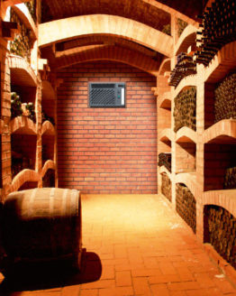 Climatiseur WineMaster C50